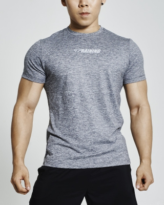 Performance Training Shirt (Grey)